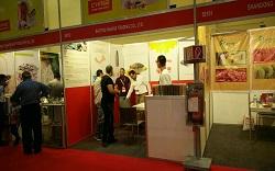 中國(埃及)照明及燈飾展覽會